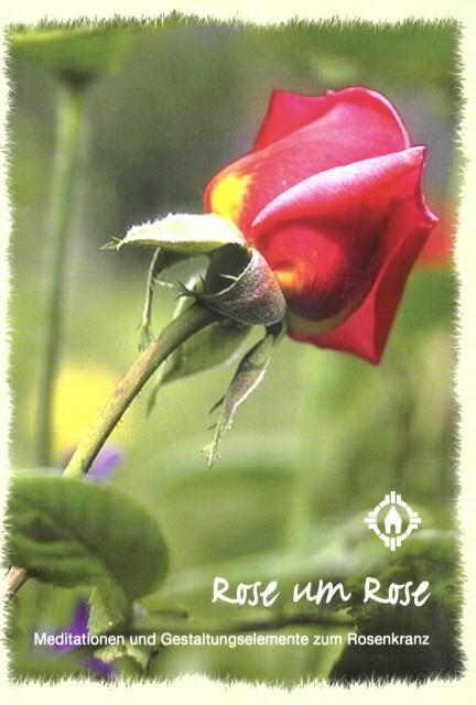Rose um Rose als Buch von