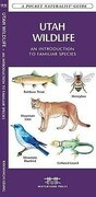 Utah Wildlife: A Folding Pocket Guide to Familiar Species