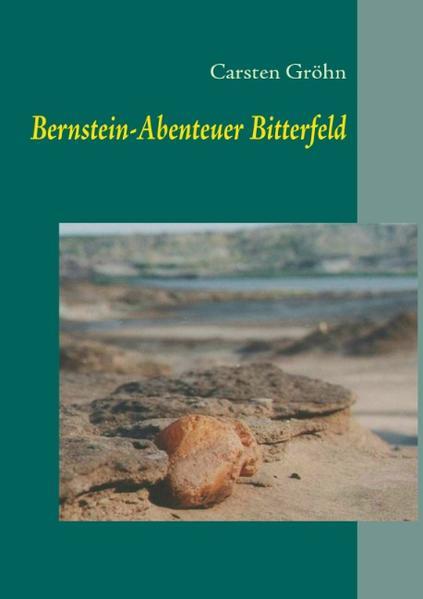 Bernstein-Abenteuer Bitterfeld als Buch von Car...