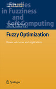 Fuzzy Optimization