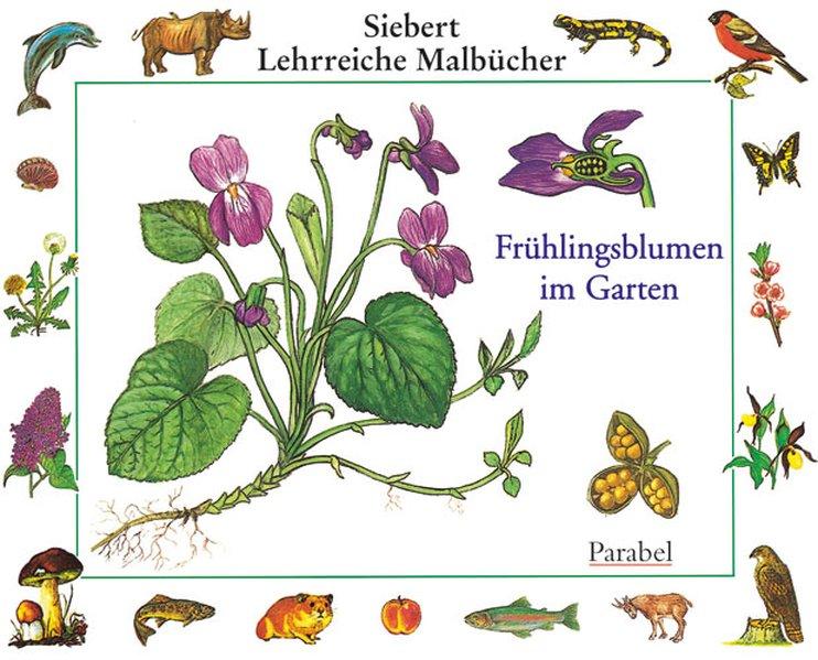 Frühlingsblumen im Garten als Buch von Erwin Ei...