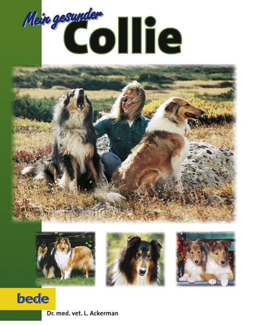 Mein gesunder Collie als Buch