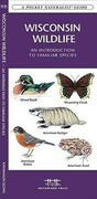 Wisconsin Wildlife: A Folding Pocket Guide to Familiar Animals