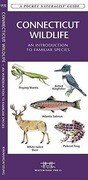Connecticut Wildlife: A Folding Pocket Guide to Familiar Species