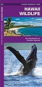 Hawaii Wildlife: A Folding Pocket Guide to Familiar Species