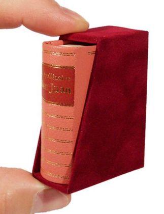 Die Großtaten eines jungen Don Juan als Buch