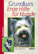 Grundkurs Erste Hilfe für den Hund