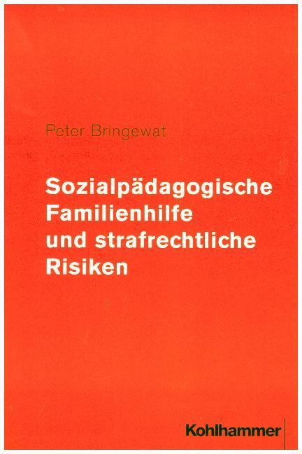 Sozialpädagogische Familienhilfe und strafrechtliche Risiken als Buch