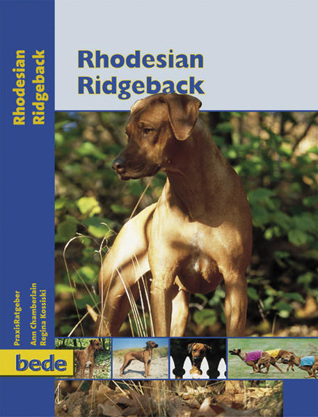 PraxisRatgeber Rhodesian Ridgeback als Buch