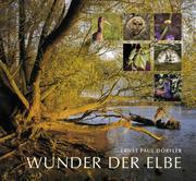 Wunder der Elbe