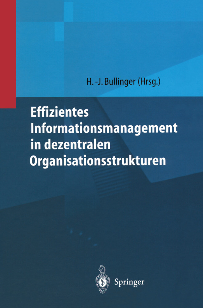 Effizientes Informationsmanagement in dezentralen Organisationsstrukturen als Buch