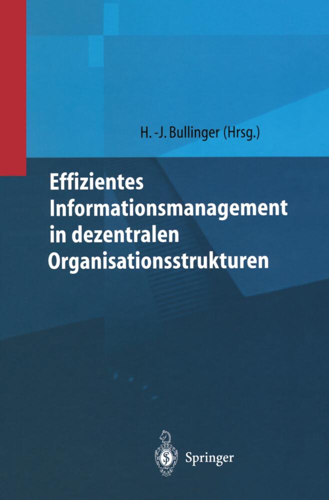 Effizientes Informationsmanagement in dezentralen Organisationsstrukturen als Buch