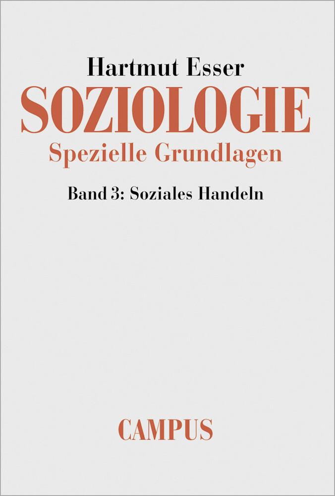 Soziologie. Spezielle Grundlagen als Buch