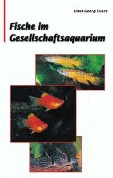Fische im Gesellschaftsaquarium als Buch (gebunden)
