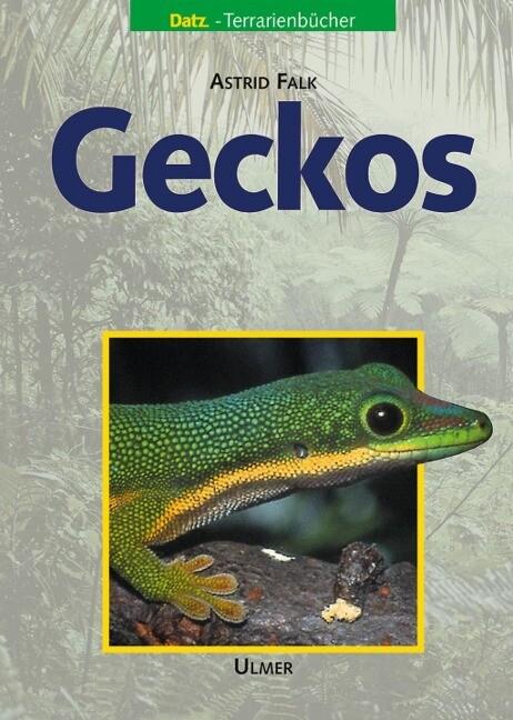 Geckos als Buch