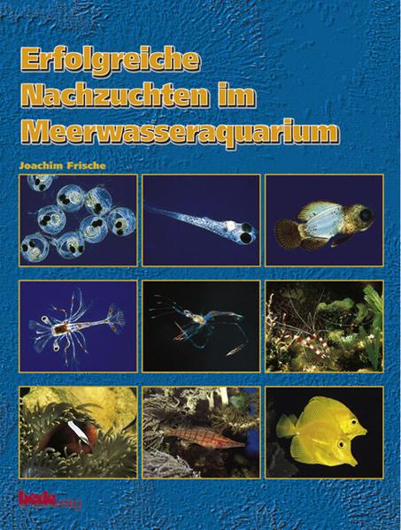 Erfolgreiche Nachzuchten im Meerwasseraquarium als Buch (gebunden)