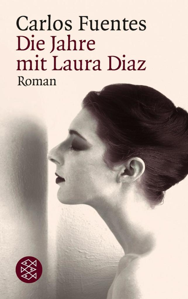 Die Jahre mit Laura Diaz als Taschenbuch