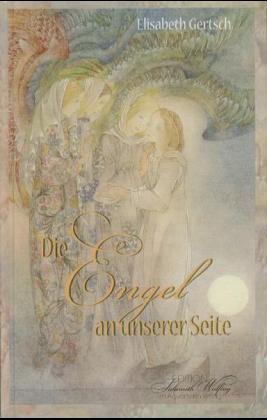 Die Engel an unserer Seite als Buch (gebunden)