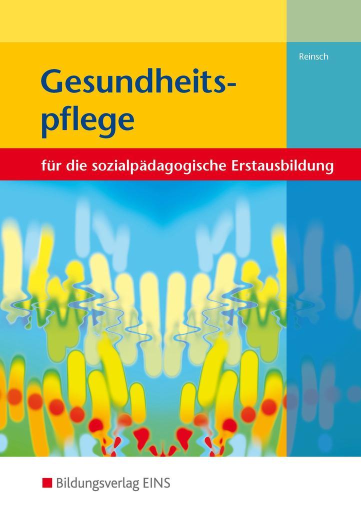 Gesundheitspflege. Lehr-/Fachbuch als Buch