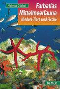 Farbatlas Mittelmeerfauna