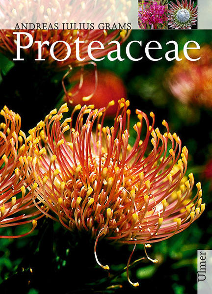 Proteaceae als Buch
