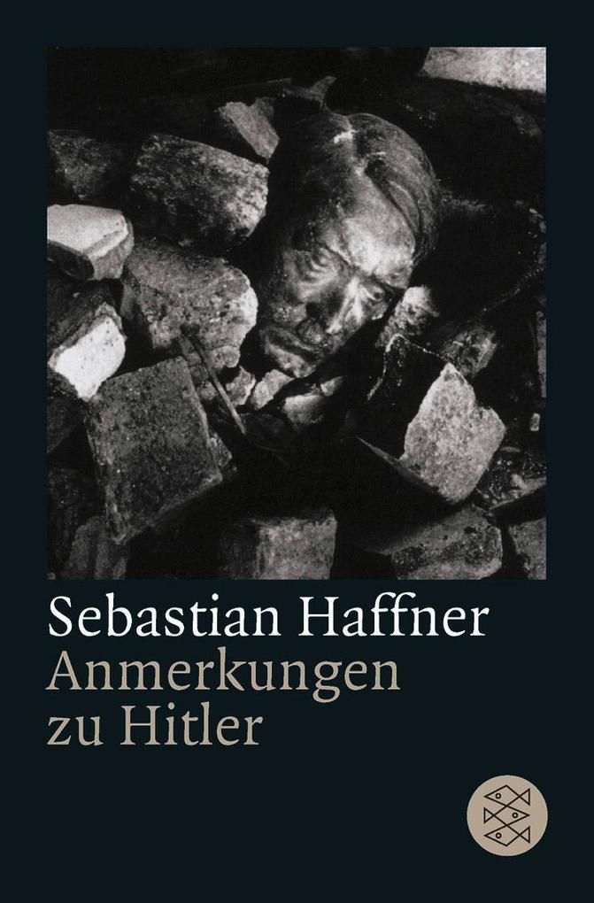 Anmerkungen zu Hitler als Taschenbuch