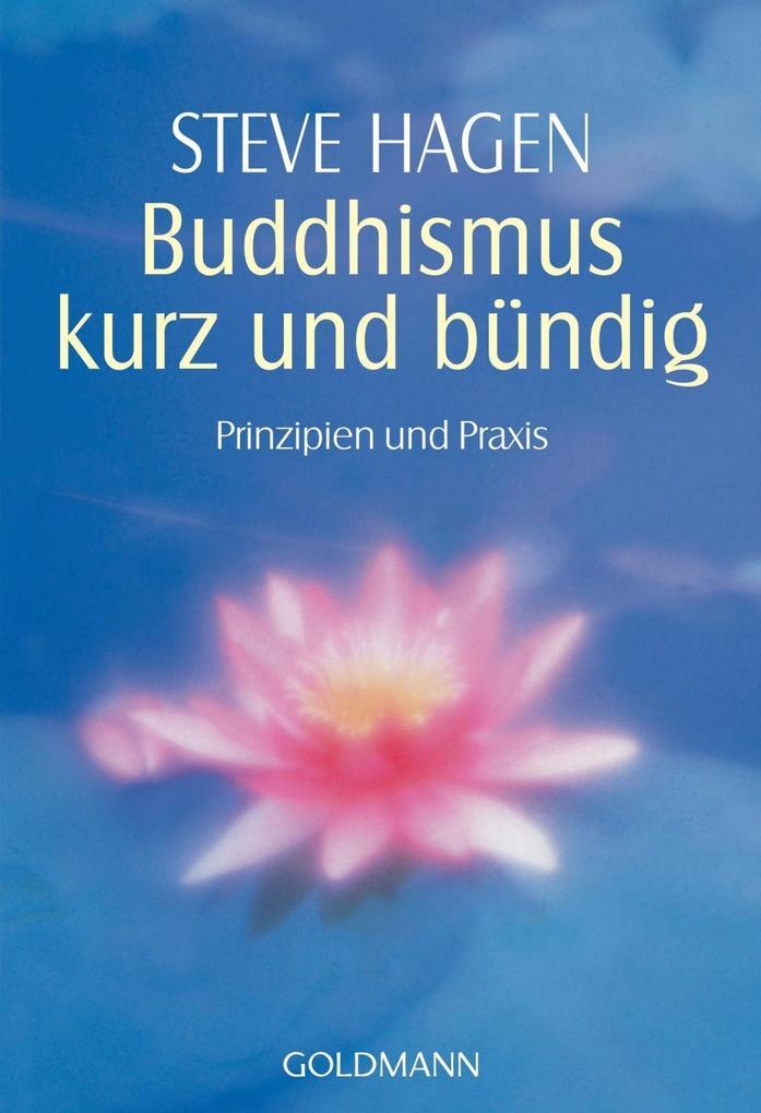 Buddhismus kurz und bündig als Taschenbuch
