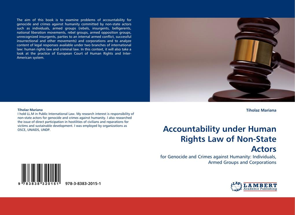 Accountability under Human Rights Law of Non-St...