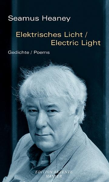 Elektrisches Licht / Electric Light als Buch