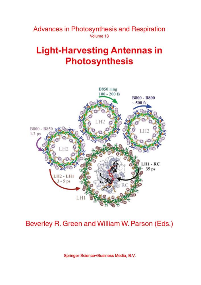 Light-Harvesting Antennas in Photosynthesis als Buch von
