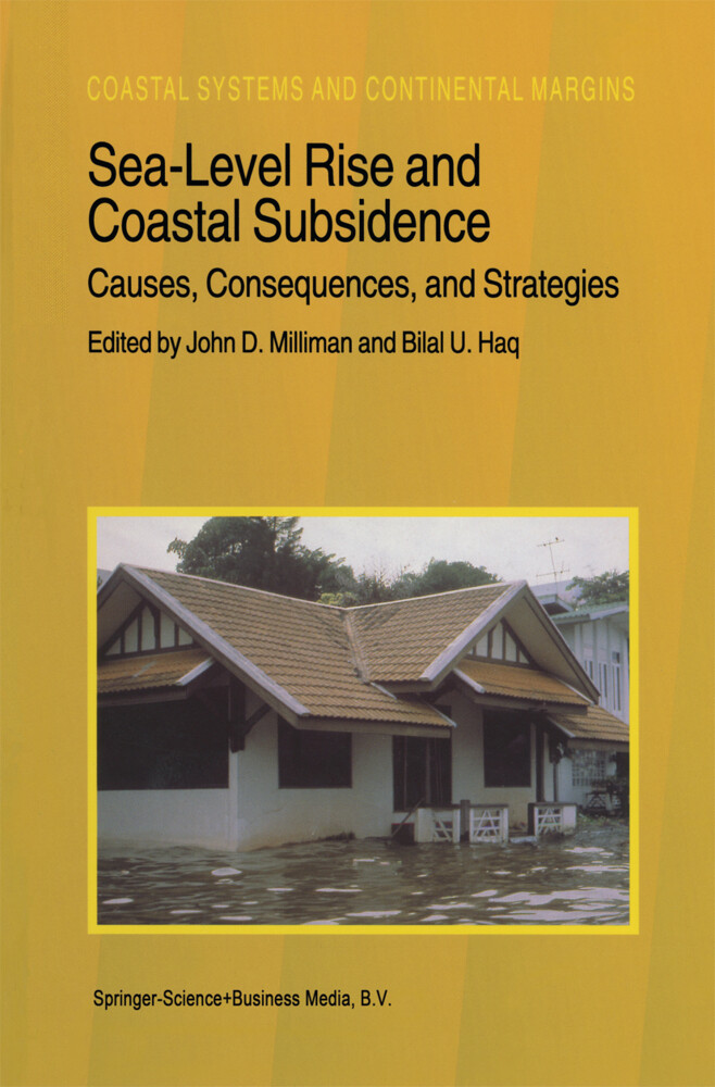 Sea-Level Rise and Coastal Subsidence: Causes, Consequences, and Strategies als Buch von