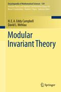 Modular Invariant Theory
