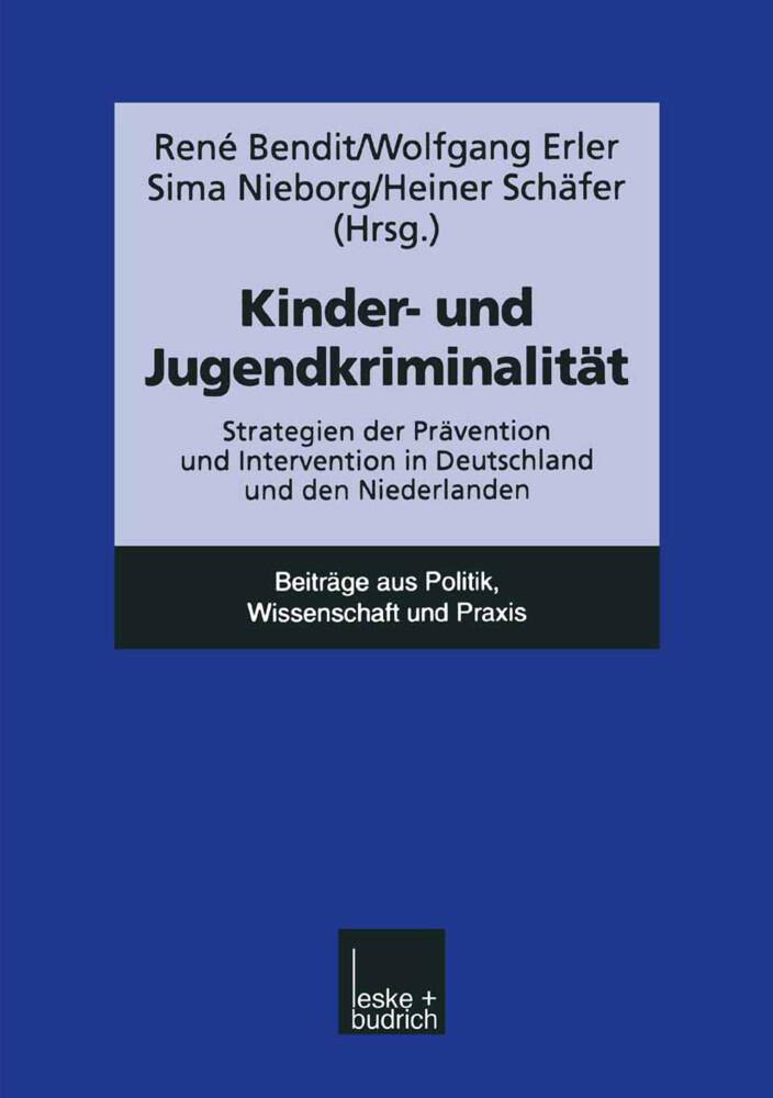 Kinder- und Jugendkriminalität als Buch