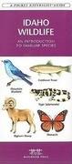 Idaho Wildlife: An Introduction to Familiar Species
