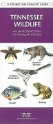 Tennessee Wildlife: A Folding Pocket Guide to Familiar Species