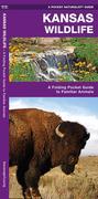 Kansas Wildlife: A Folding Pocket Guide to Familiar Species