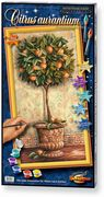 Schipper Malen nach Zahlen - Citrus aurantium