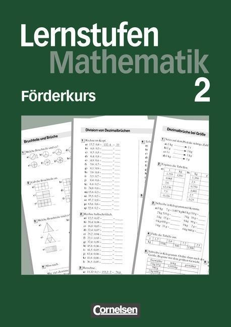 Lernstufen Mathematik 6. Förderkurs 2 als Buch