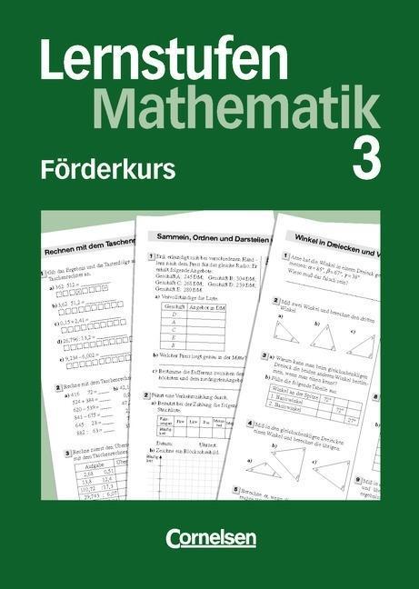 Lernstufen Mathematik 7. Förderkurs 3 als Buch
