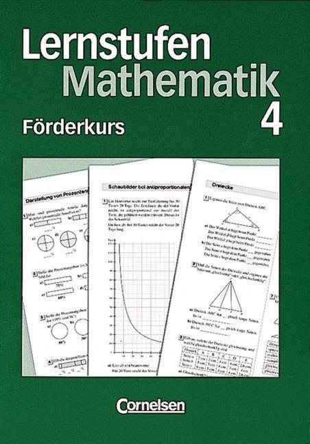 Lernstufen Mathematik 8. Förderkurs 4 als Buch