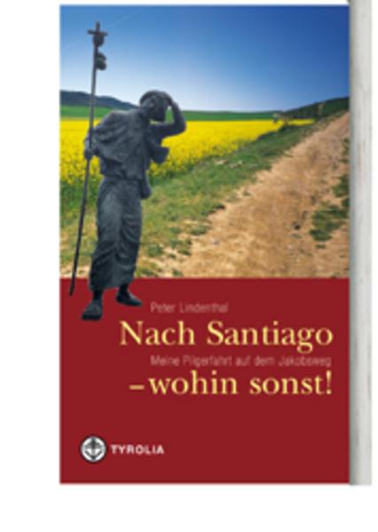 Nach Santiago - wohin sonst! als Buch