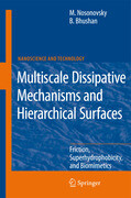 Multiscale Dissipative Mechanisms and Hierarchical Surfaces