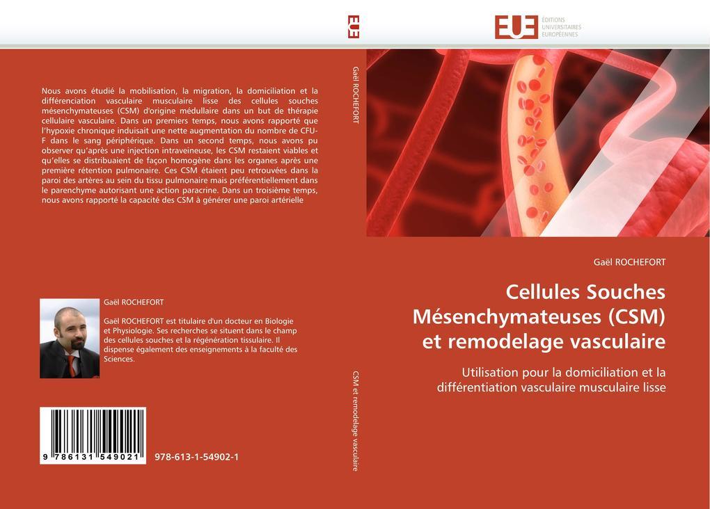 Cellules Souches Mésenchymateuses (Csm) Et Remodelage Vasculaire als Taschenbuch