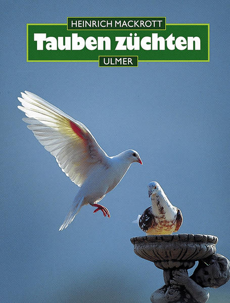 Tauben züchten als Buch