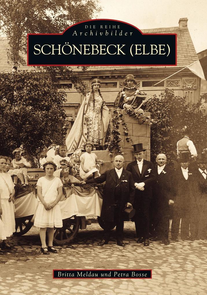 Schönebeck/Elbe als Buch