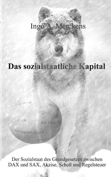 Das sozialstaatliche Kapital als Buch (gebunden)