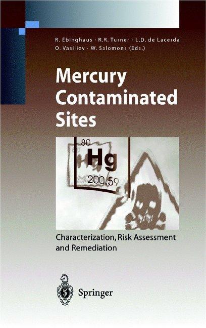 Mercury Contaminated Sites als Buch