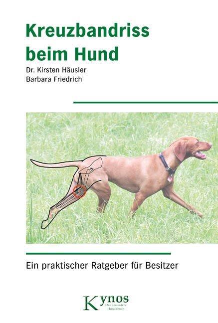 Kreuzbandriss beim Hund als Buch von Kirsten Hä...