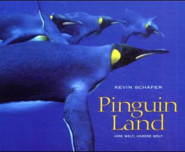 Pinguine als Buch (gebunden)
