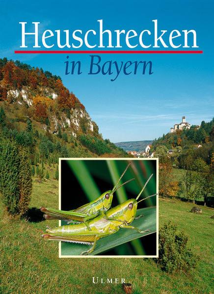Heuschrecken in Bayern als Buch